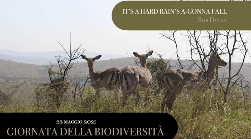 22 maggio 2021 Giornata della biodiversità